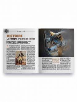 Le loup à travers les siècles