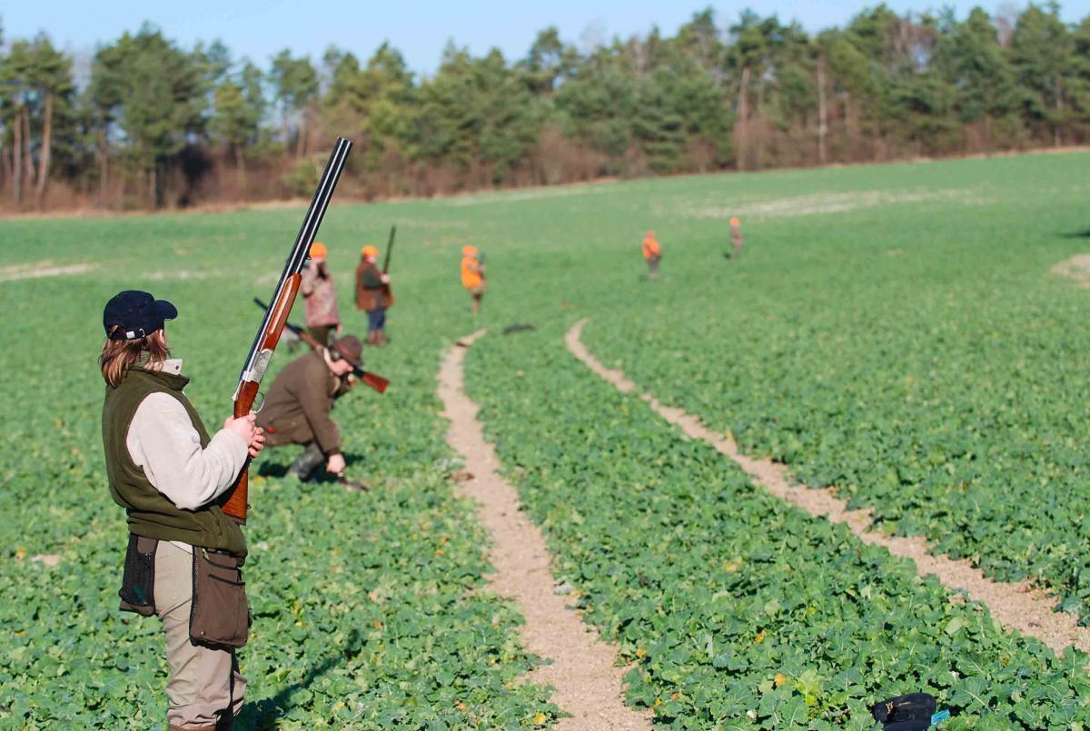 Sécurité : une formation obligatoire pour tous les chasseurs