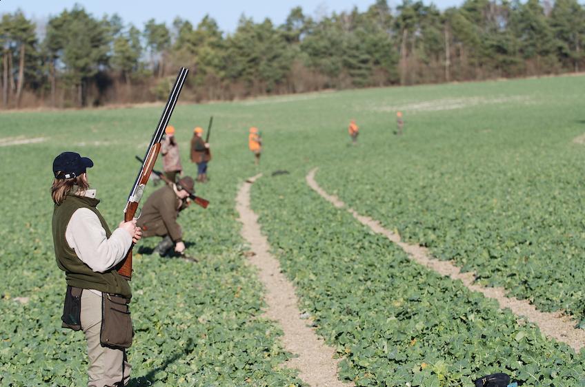 Les fondamentaux du tir de chasse