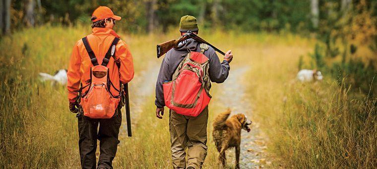 Accidents de chasse : jamais satisfaisant