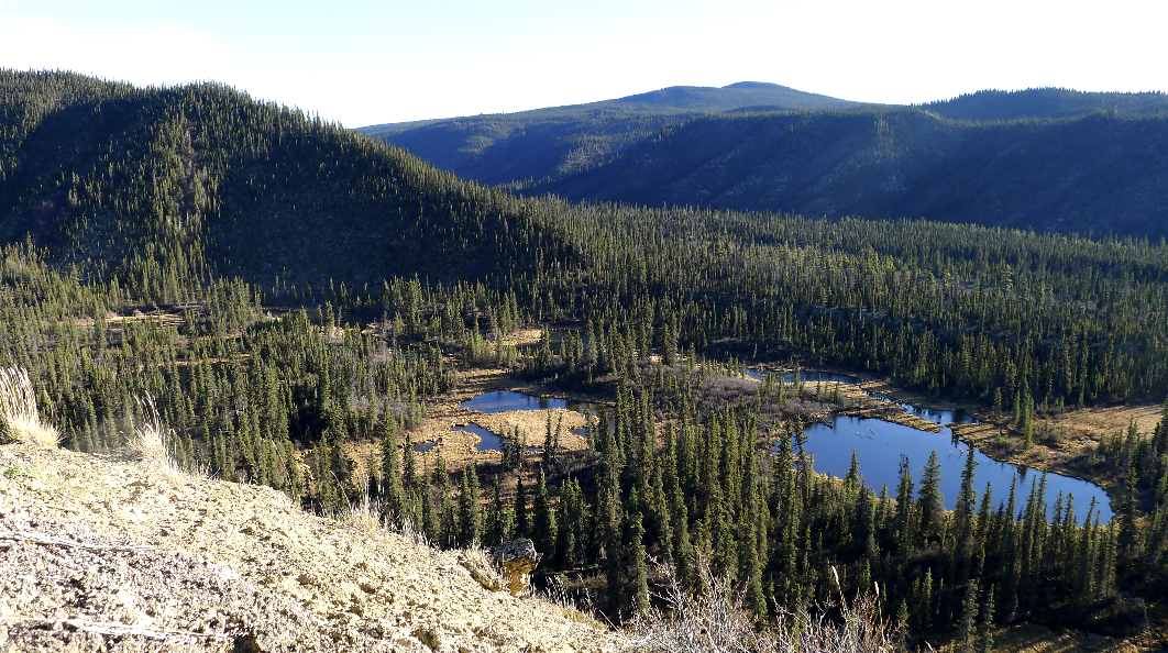 Les géants du Yukon