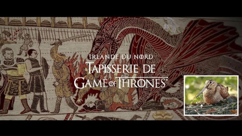 Game of Thrones : une série dangereuse pour les bécasses ?