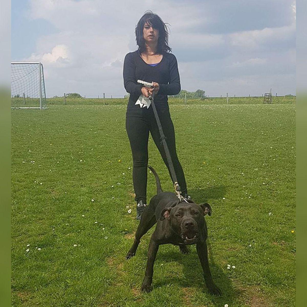 Affaire Elisa Pilarski : Le chien Curtis est le seul coupable