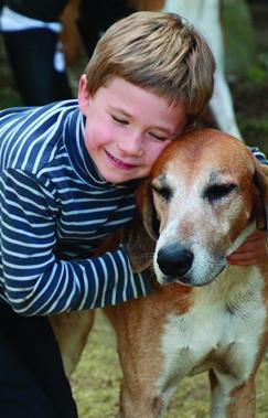 Rallye Saint-Eustache : parrainer un chien de meute