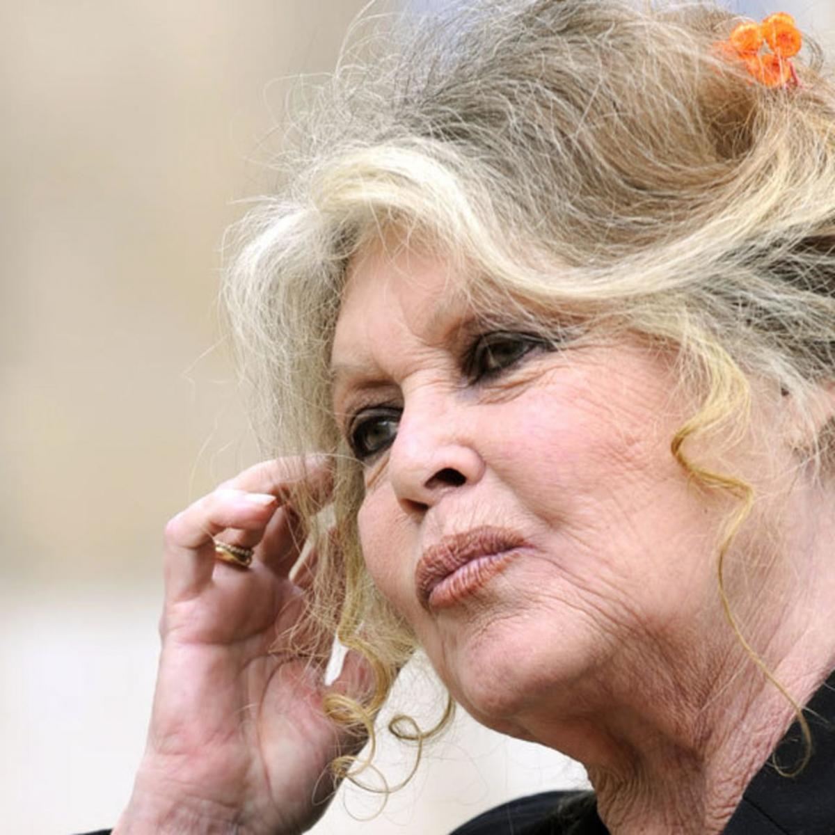 Injures à l'encontre de Willy Schraen : Brigitte Bardot condamnée