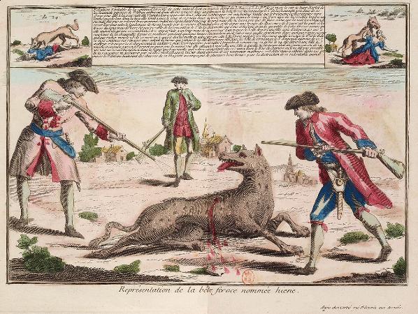 La Bête du Gévaudan. Non ce n'était pas un loup...
